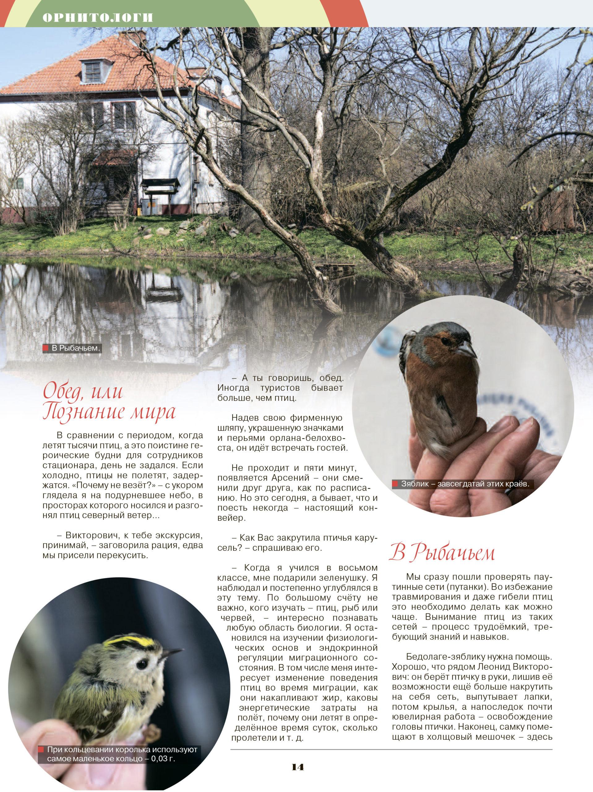 "Журнал ""Красивая жизнь"" (Таллинн)"