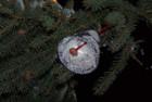 Скоро — Рождество