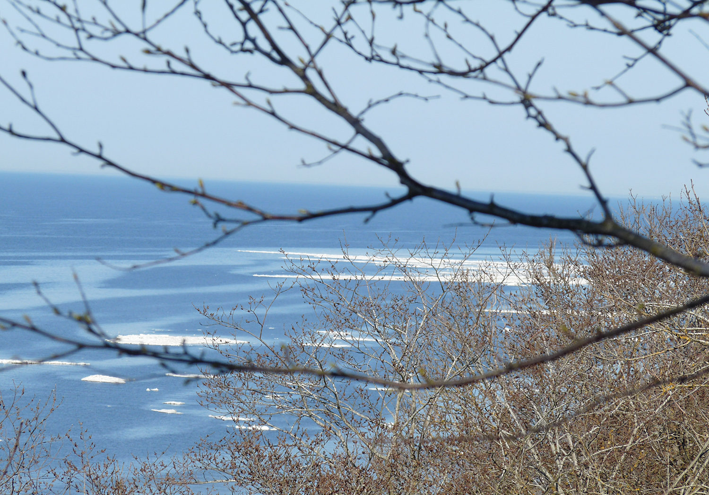 Остановка и порция морского воздуха
